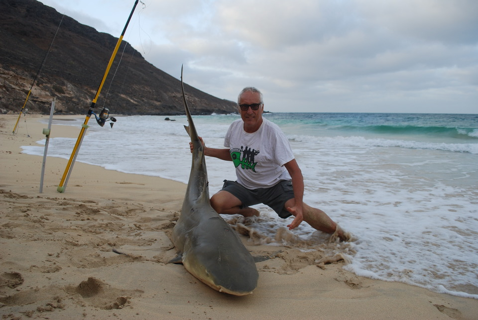 CAPO VERDE: IL MIO PRIMO LEMON SHARK OVER 200