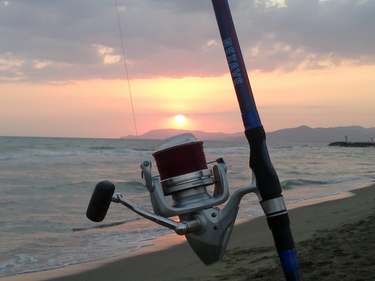 Shimano sunset